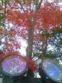 岡山城を照らすライト
